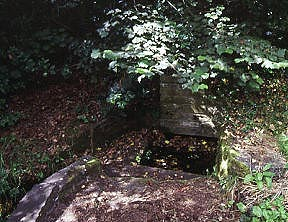 St Millburgha's Well